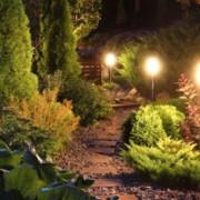 Un jardin éclairé